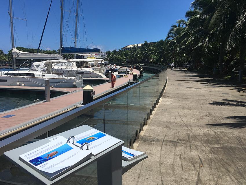 Marina de Papeete